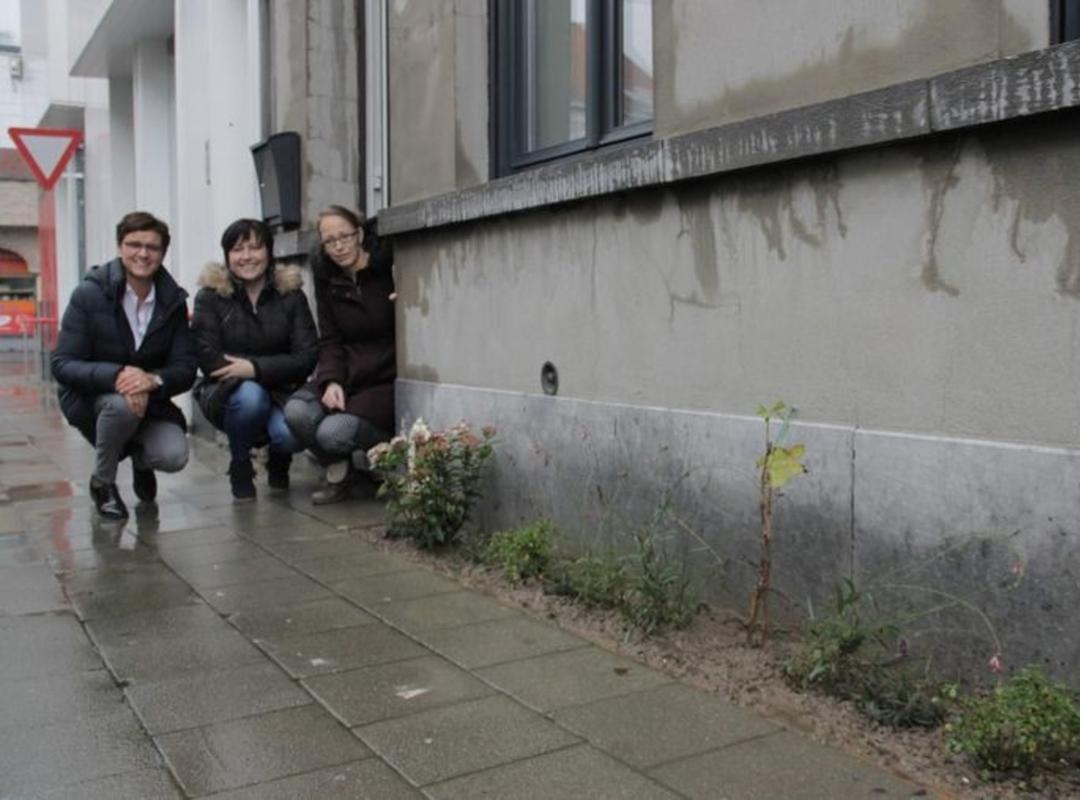 © Foto VDI Schepenen Caroline Maertens en Nadia Staes met Aline Verbeeck bij haar tegeltuintje.
